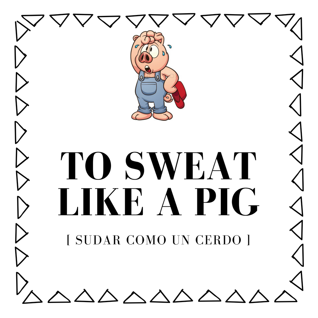 sudar como un cerdo