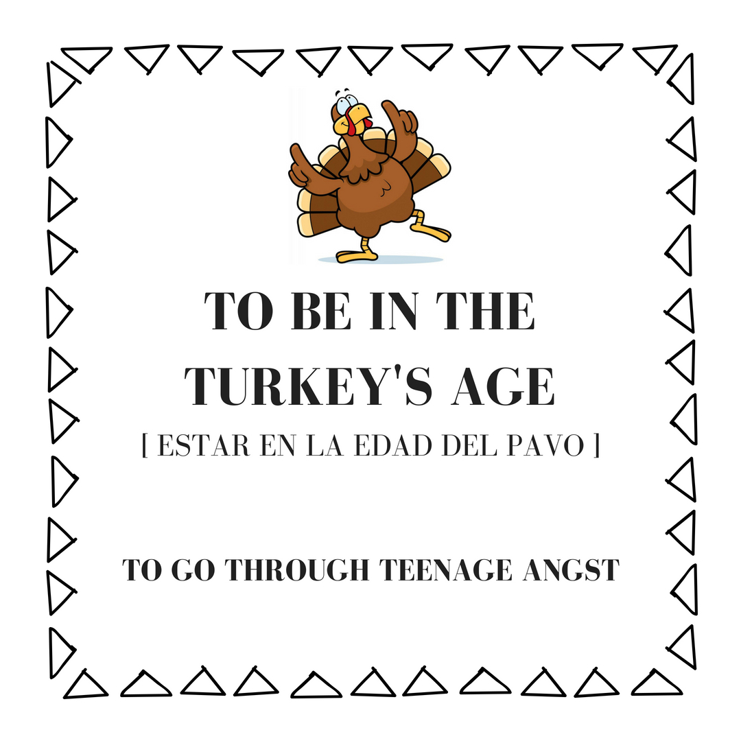 to be in the turkey's age